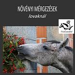 Növényi mérgezések LÓHERBA könyv banner.