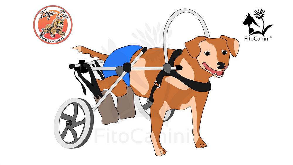 kutyakocsi, Zsiga-biga