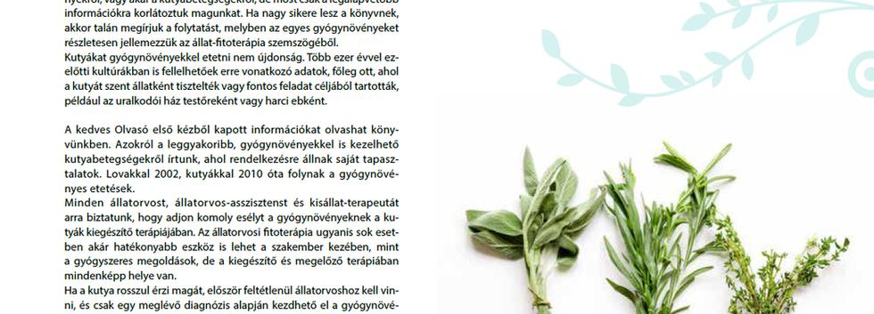 Alapvető tudnivalók a gyógynövényekről