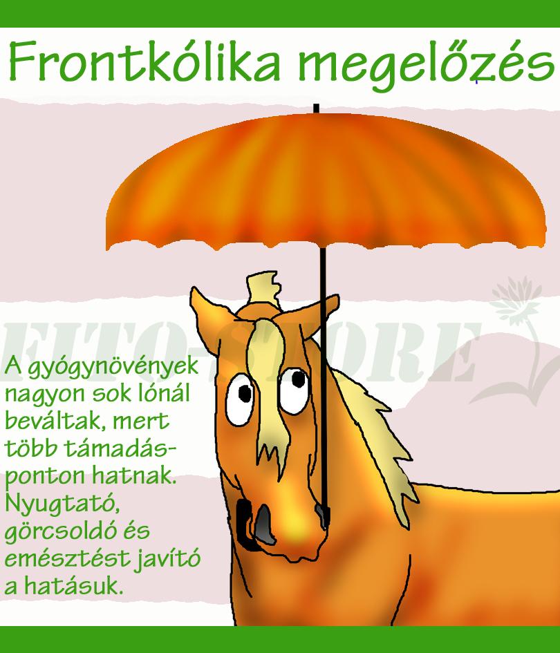 FRONTKÓLIKA