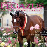 Pegazus_magazin.png