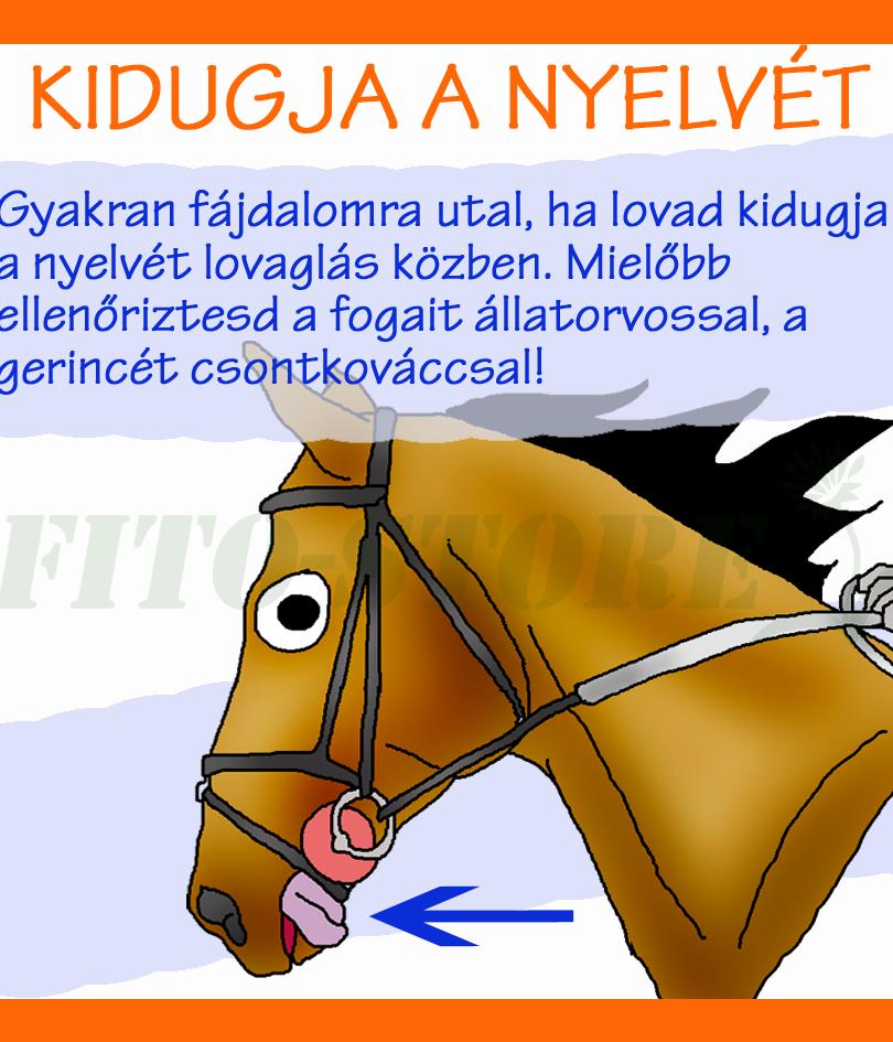 NYELVKIDUGDOSÁS