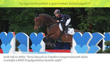 Ajánlás, Janik Vali felül zöld2.jpg