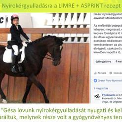 Galácz Katalin, Gésa