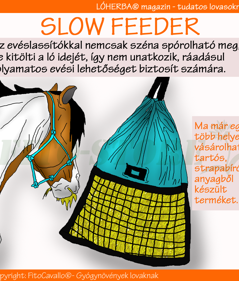 SLOW FEEDER