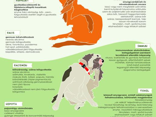 FitoCanini® gyógyhatású termékek kutyáknak a bőr- és a szőr egészségéért