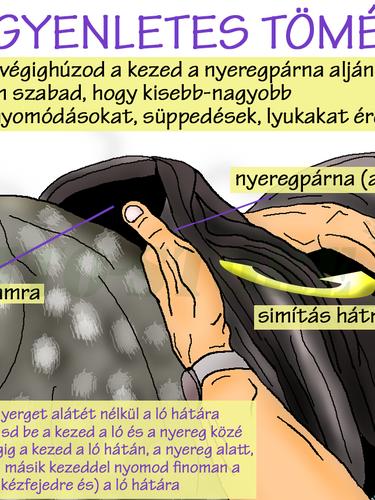 NYEREGTÖMÉS