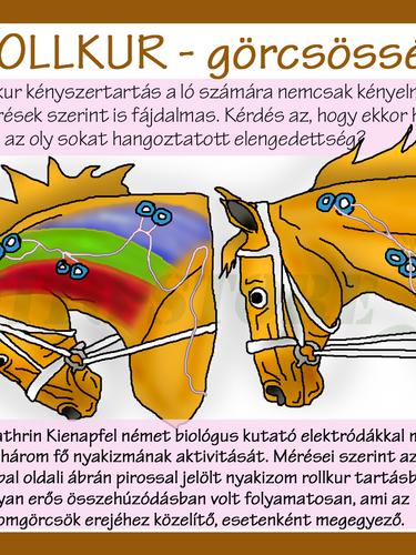 ROLLKUR - ELEKTRÓDÁK