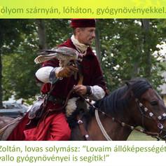 Krekács Zoltán