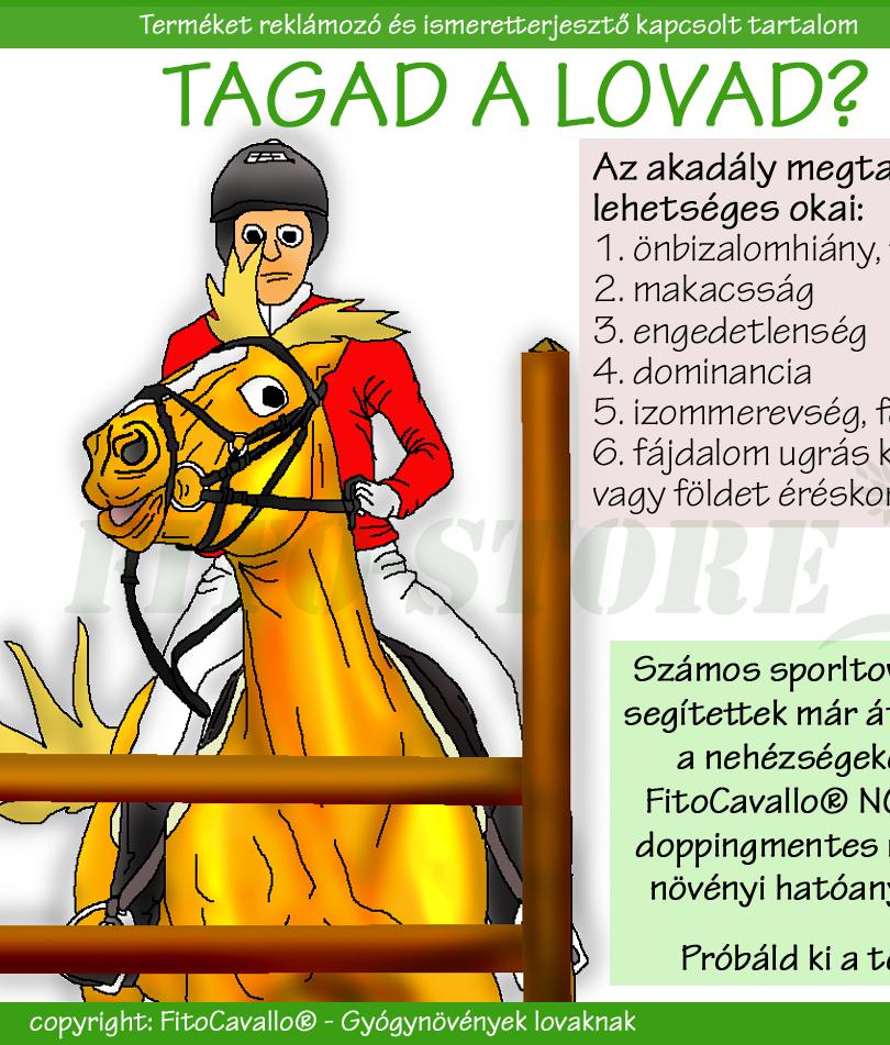 TAGAD A LÓ