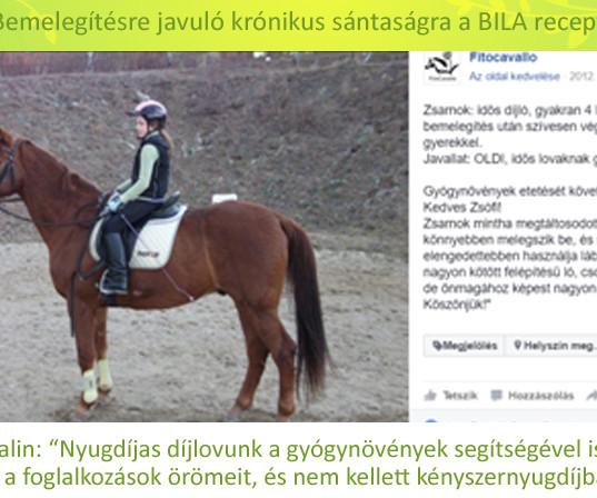 Galácz Katalin, Zsarnok