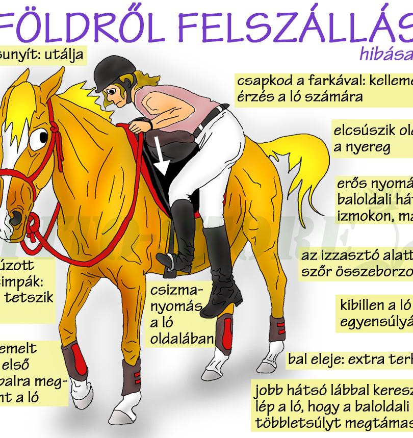 FÖLDRŐL FELSZÁLLÁS