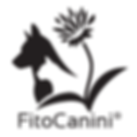 600-as fitocanini logo.png