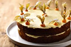 carrot cake landscape