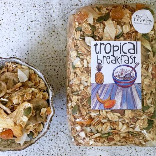 Gluten Free - Tropical Muesli with Organic Seeds & Grains