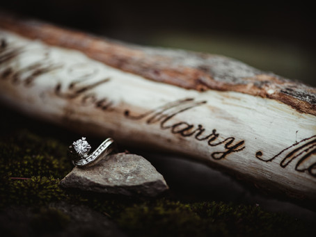 SURPRISE WEDDING PROPOSAL PHOTOGRAPHY SESSION | Engagement photographers Rochester NY