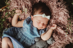 Newborn Photographers Rochester, NY