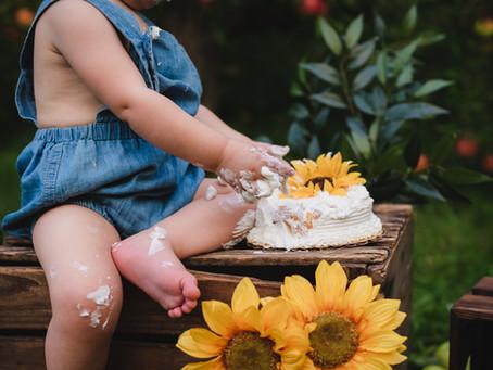 1st BIRTHDAY CAKE SMASH  - Rochester Family Photographer