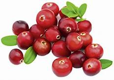 Cranberry for Overactive Bladder