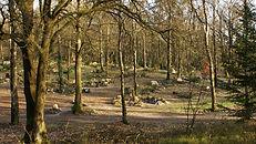 Natuurbegraafplaats weverslo.jpg