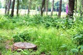 natuurbegraafplaats mookerheide.jpg