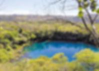 cenotes3.jpg