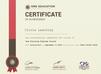 Dog Training Diploma Certificate