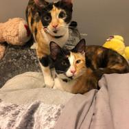 Isabella & Abbie