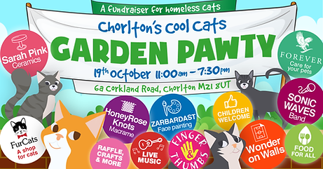Cool-Cats-Garden-Party-Invite-1200x628.p