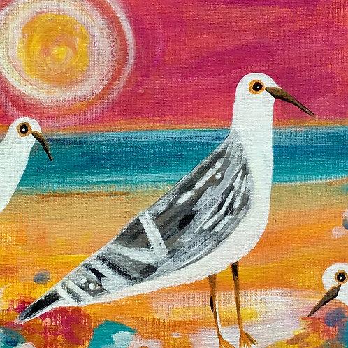 Seagull Squad