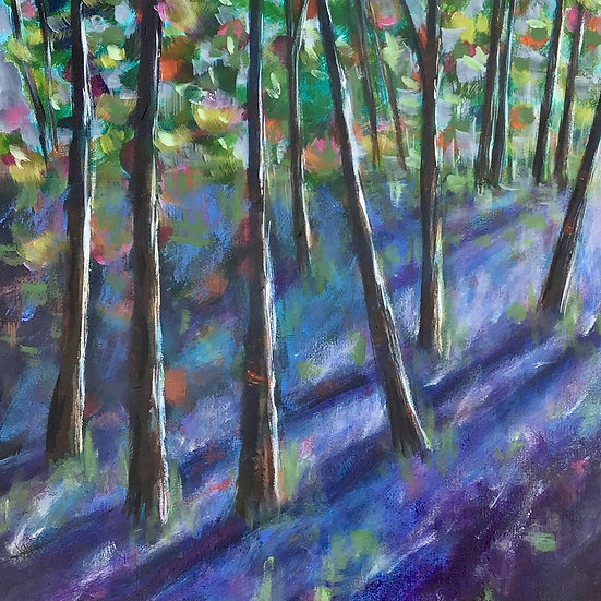 Bluebell Wood With Julie Dumbarton