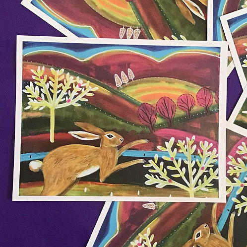 Hare Postcards