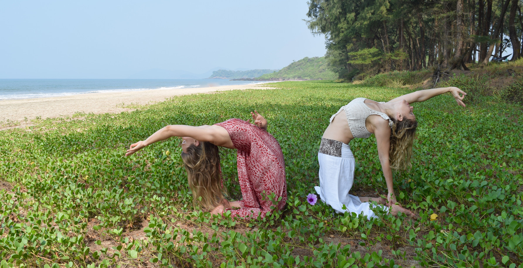 Turtle Beach, Goa