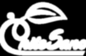 logo blanco sin slogan.png