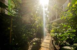 Garden 2 - Borboleta - Hotel Morro