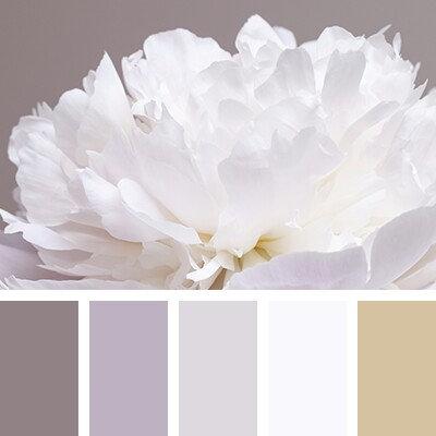 Kytice v bílých odstínech