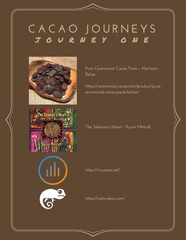 Journey One - January 2017