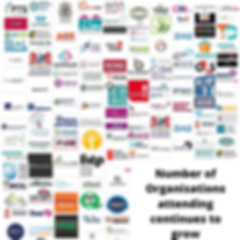 organisations that attended.png