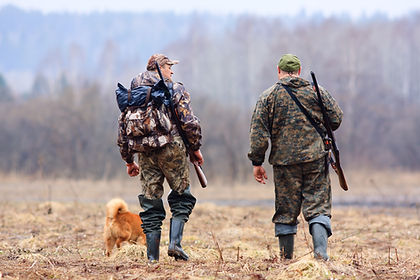 Hunters And Dog