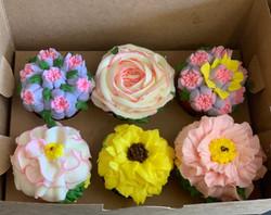 Cupcake- 6 pack