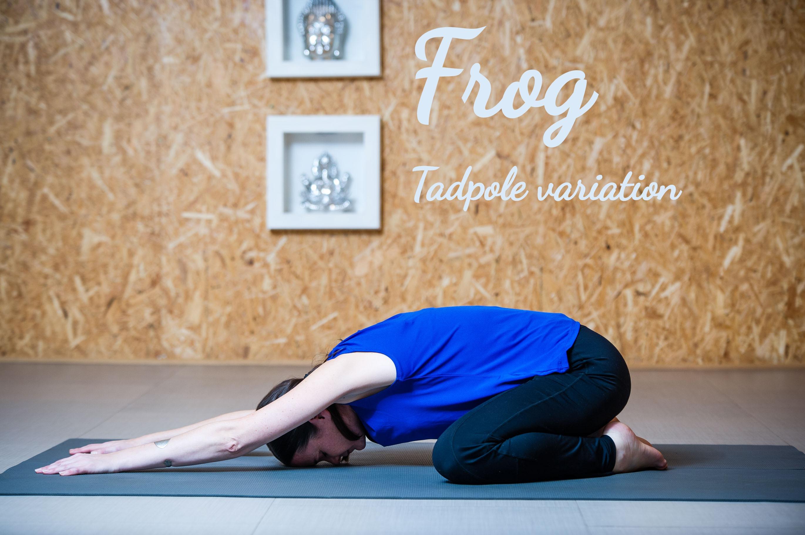 FROG  - Tadpole variation