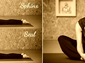 LATEST FREE AUDIO CLASS! Yin Yoga: The quiet, mindful practice