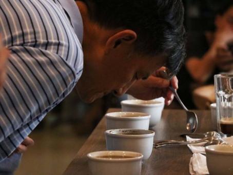Cafeteria Um Coffee Co. lança série de cursos sobre café