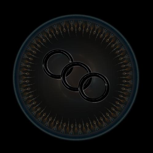 Methox X O-Ring Kit (4 PACK)