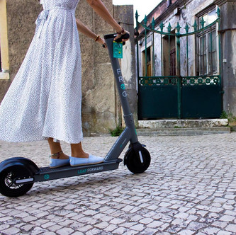 FROG SCOOTERS