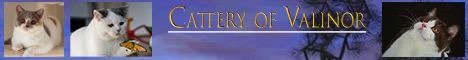 Cattery of Valinor