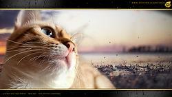 Snow Bengal Cat Katze - Horst von Dimi Power by Falkenstein DE BY - 1080p