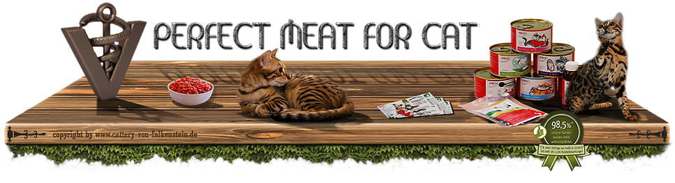 Perfect meat for Cat