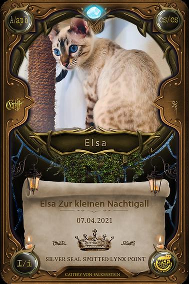 Elsa Zur kleinen Nachtigall - falkensteinbengal