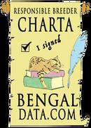 Bengal data Charta - Cattery von Falkenstein